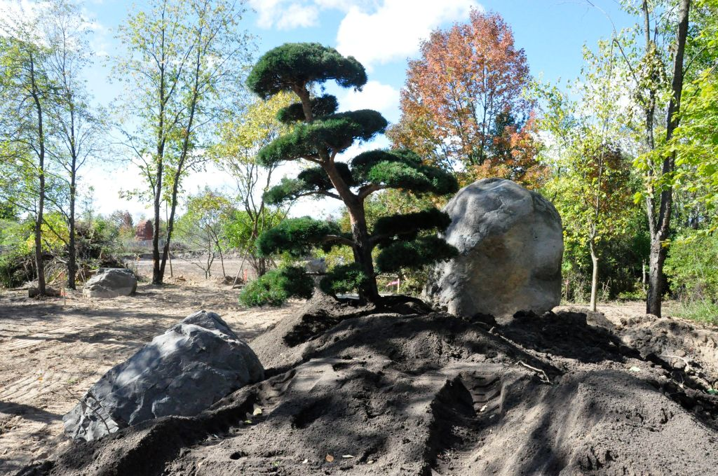 The Foundation Of A Japanese Garden Boulder Placement