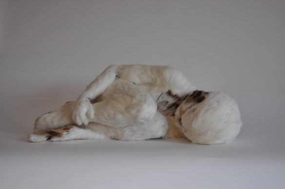 Lucy Glendinning: Feather Child 1. Vote Code: 56788