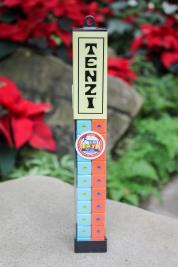 """A """"Best Toys For Kids"""" Winner! Tenzi – $16.95"""