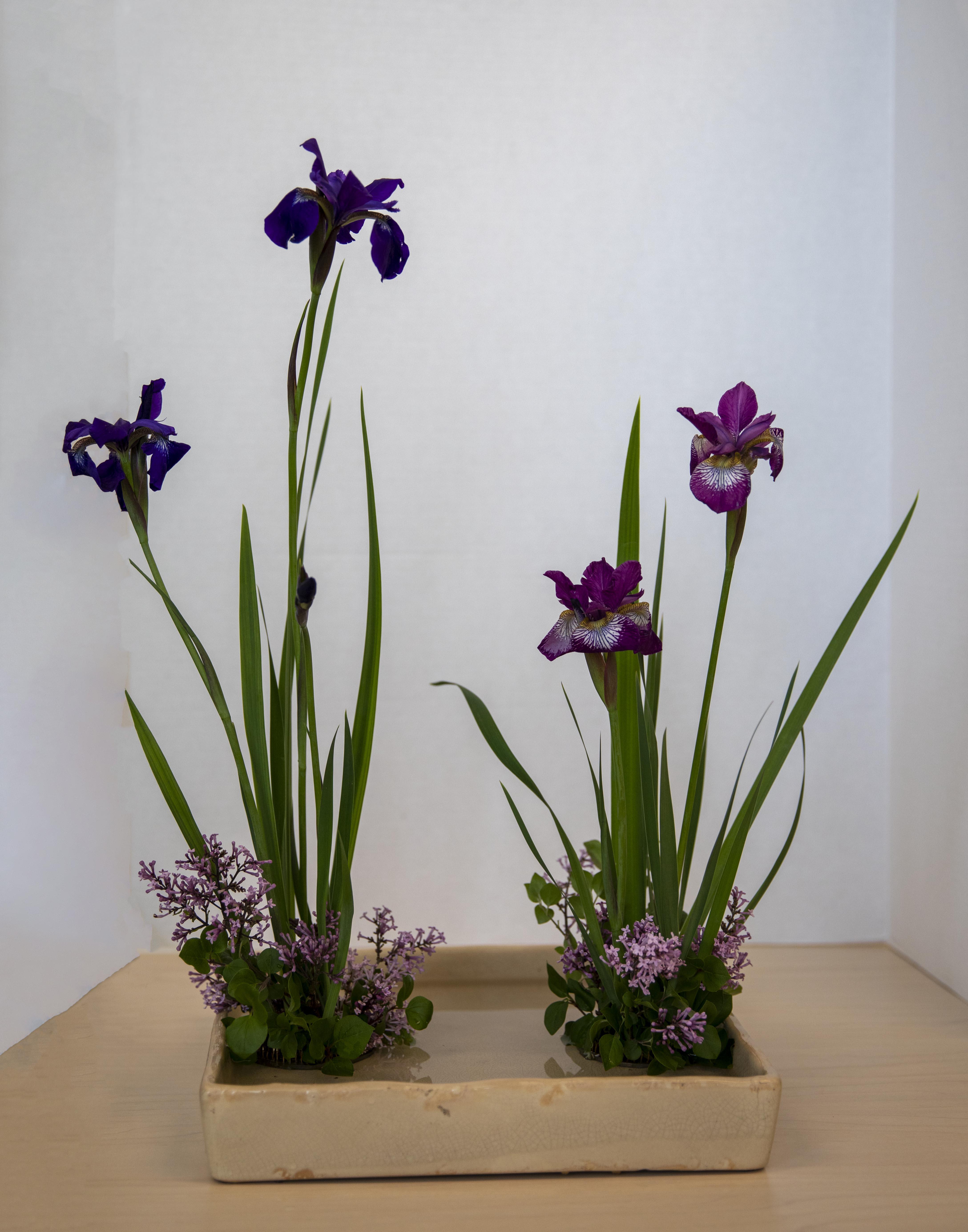 ikebana first arrangement